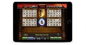 In questa schermata c'è la panoramica del gioco di Book of Ra bingo di Novomatic.